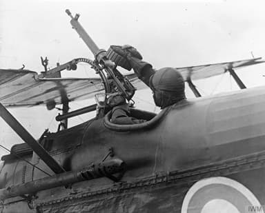 Pilot's Choice of Weapons on a Royal Aircraft Factory S.E.5
