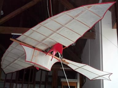 Replica of Machine Used for The First Powered Flight (1848)