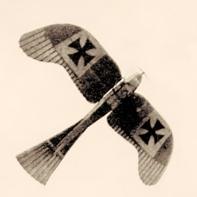 Rumpler Taube Bomber, Surveillance, and Trainer (1910)