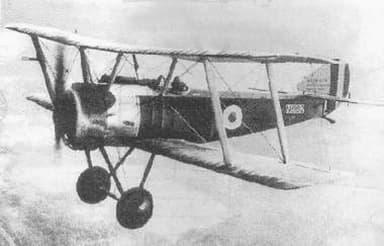Sopwith Pup in Flight (1917)