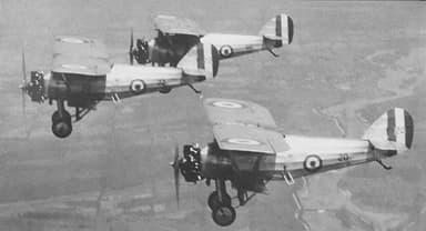 """""""The Siskins"""" Flight Demonstration Team"""
