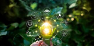 hand_holds_lightbulb_swathed_in_leaves_surrounded_by_symbols_of_renewable_energy_sustainable_development_solar_wind_hydro_water_by_ipopba