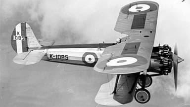 Bristol Bulldog Torbeau 'Carrying a Torpedo'