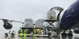 Cargo-friendly airports shine during COVID crisis