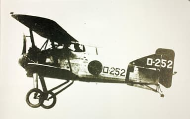 The Nakajima A1N1 Carrier Based Fighter
