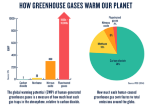 THE TYPES OF GREENHOUSE GASES