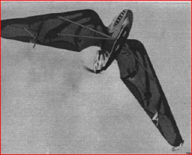 Pterodactyl IV Pictured from Below (Flight Magazine 1928)