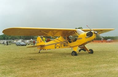 Taylor J-2 Cub Personal Aircraft in 1995
