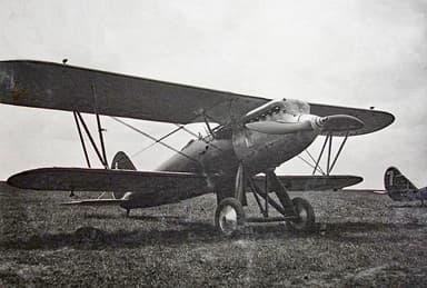 The Polikarpov I-3 Biplane Fighter Aircraft